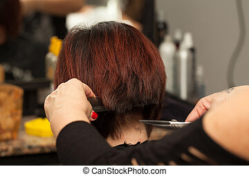 Hairdresser Cuts Hair - Hairdresser cuts hair of a client in...