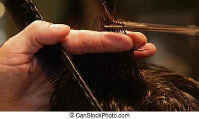 Hairdresser cutting hair, close-up of comb and scissors, cut out