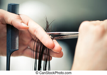 Hairdresser Cutting Hair - Hairdresser's hands cutting hair.