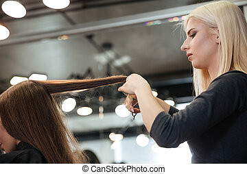 Hairdresser doing hairstyle to her client at hair salon -...