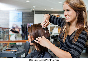 Hairdresser Giving a Haircut To Woman - Beautiful young ...