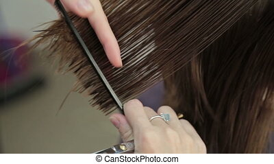 Hairdresser trimming brown hair with scissors, HD
