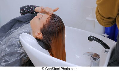 Hairdresser washing hair of woman client - Professional...