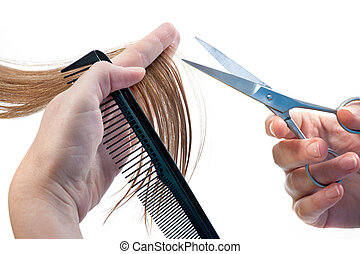 hands of hairdresser cutting woman?s hair isolated on white