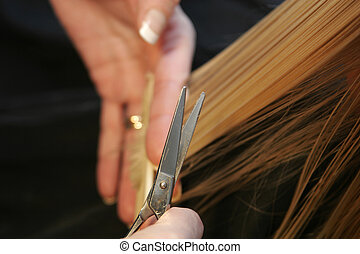 hairdressing - professional hairdresser cutting childs hair