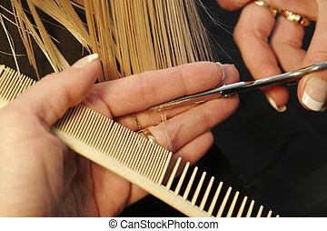 hairsaloon - closeup of hairdresser cutting hair