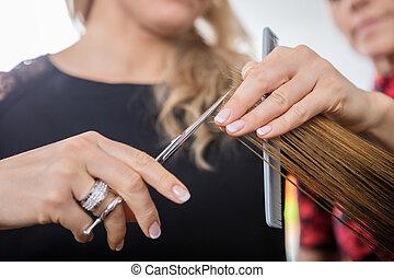Hairstylist Cutting Client's Hair In Salon