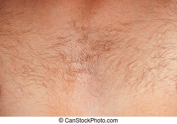 Hairy chest men