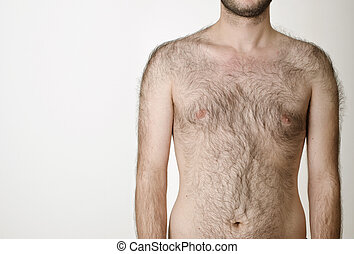 hairy male torso on a white background