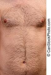 Hairy skin background