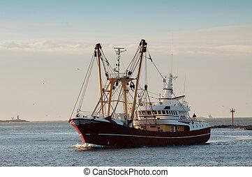 halászat, hajó, alatt, kikötő