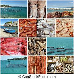 halászat, kollázs