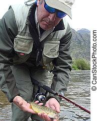 halászat, pisztráng