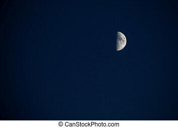 halber mond, in, der, blaues, nacht himmel