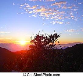 haleakala, 日の出