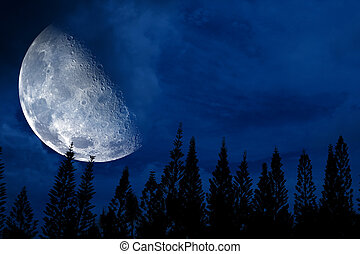 half moon back silhouette pine in dark night sky