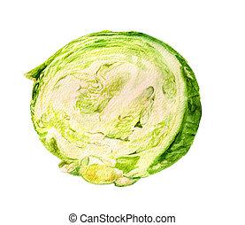 Half of cabbage