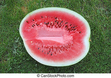 Half of water-melon against a green grass