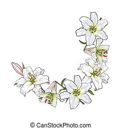 Half round frame of white lily flowers, decoration element