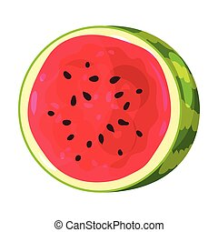 Half round watermelon. Vector illustration on white background.