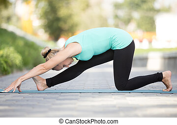 Half splits pose