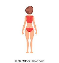 Half-Undressed Female Standing Back View and Making Roentgen Vector Illustration. Radiographic Procedure Concept