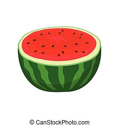 Half watermelon. Vector illustration on white background.