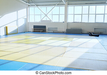 Hall of martial arts - ring