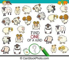 hallazgo, uno clase, con, sheep, caracteres