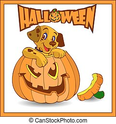 Halloween. A small dog sits in a pumpkin, a cartoon in a frame on a white background.