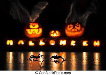 halloween, araignées