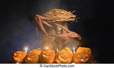 halloween, arbre, potirons, déguisement, femme, girl