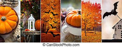 Halloween, autumn theme, stylish and juicy collage, Golden autumn, bats and pumpkins, Halloween symbols.