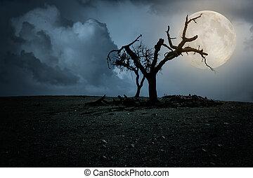 halloween avond, achtergrond