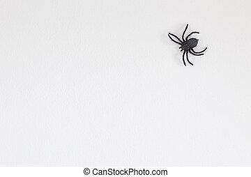 Halloween black spider on wall