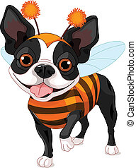 Boston terrier dressed-up like bee for Halloween