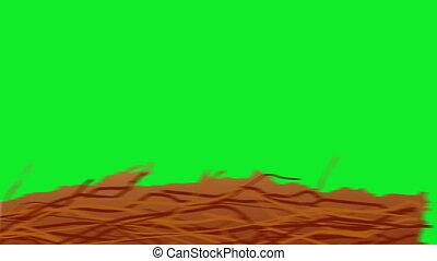 Halloween Broom Green Screen