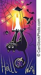 Halloween cat black  silhouettes