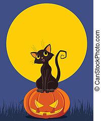 Halloween Cat on pumpkin
