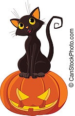 Halloween Cat on pumpkin - Black cat sitting on Halloween...
