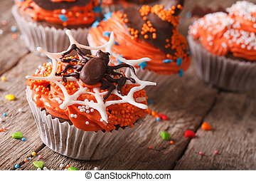 Halloween cupcakes decorated with chocolate spider close-up