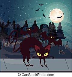 halloween dark scene with black cat