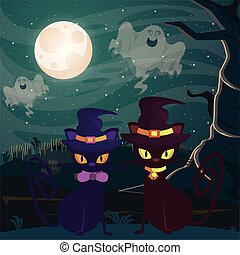 halloween dark scene with black cats