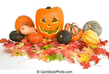 halloween, disposizione