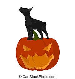 Halloween Dog Illustration - Black puppy dog on a pumpkin on...