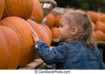 Cute little girl exploring Halloween pumpkins at the farmer's market
