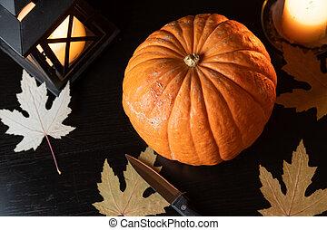 halloween, gato, o, o'lantern, calabazas