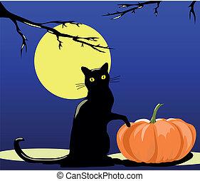 halloween, kat
