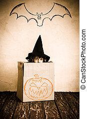 halloween, kind