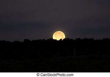 A shimmering full moon sets on All Hallow's Eve.